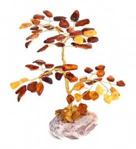 Cognac and yellow lucky tree